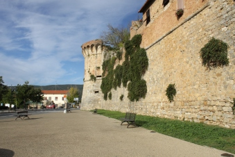 The city walls - those bushes are capers