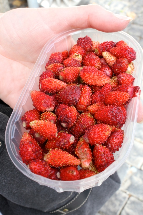 Delicious wild strawberries
