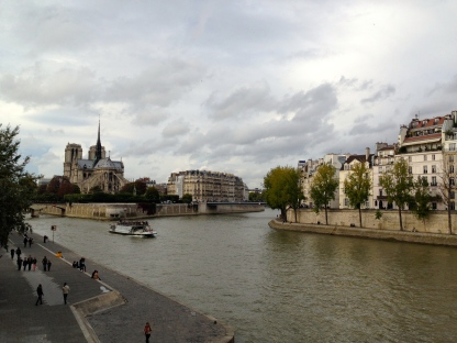 The River Seine with the back of Notre Dame in the background